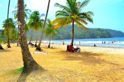 Beach and PalmTrees