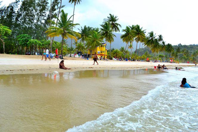 Shore of Maracas Bay