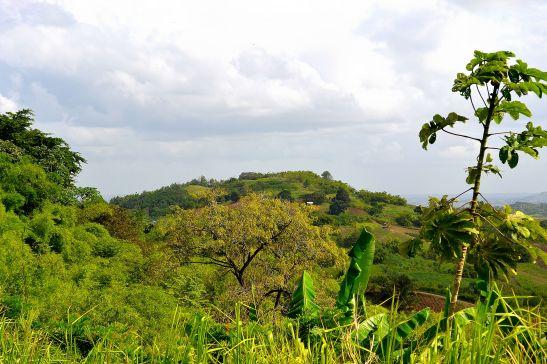 untouched land