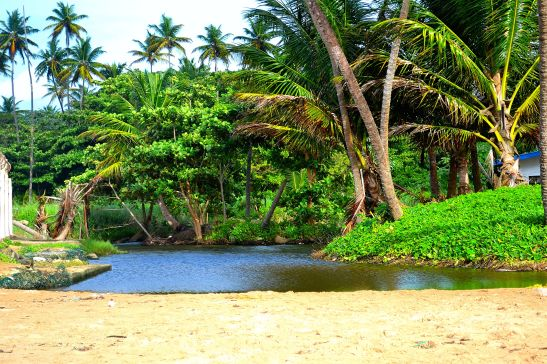 Miniature river on the sands of Mayaro Beach
