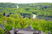 View from Mont Tremblant resort