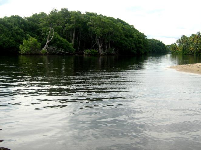 Water roads of Manzanilla Beach