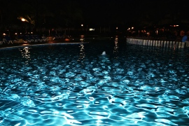 The moon illuminating the waters of the pool at night. © Krystal Seecharan