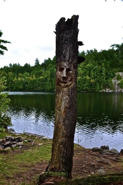 Tree carving (c) Krystal Seecharan