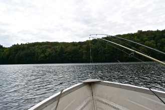 View over the bow of our boat facing out into the forest. (c) Krystal Seecharan