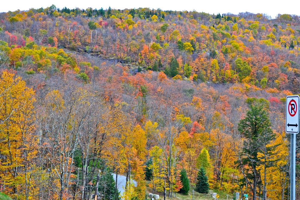 Majestic mountain range painted in fall colours