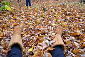 I sill enjoy playing in the leaves (c)Krystal Seecharan